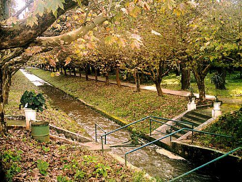 Rio dentro do Parques das �guas - Cr�ditos T.M